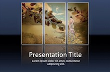 PowerPoint Gallery Template - Gallery Pack
