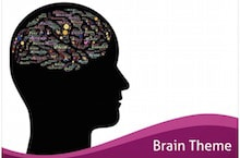 Brain PowerPoint Template - Brain